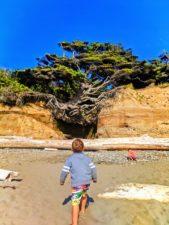 Taylor-Family-at-Hanging-tree-cave-at-Kalaloch-Olympic-National-Park-1-169x225.jpg