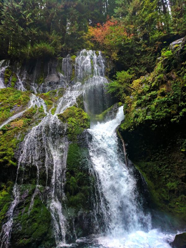 Panther Creek Falls Columbia Gorge 6