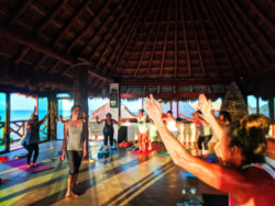 Participants with Joanne Matson at Isla Holbox Yoga Retreat 3b