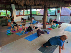 Participants with Victor Varana at Isla Holbox Yoga Retreat 15