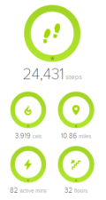 FitBit Dashboard Staying Healthy at Universal Orlando 1