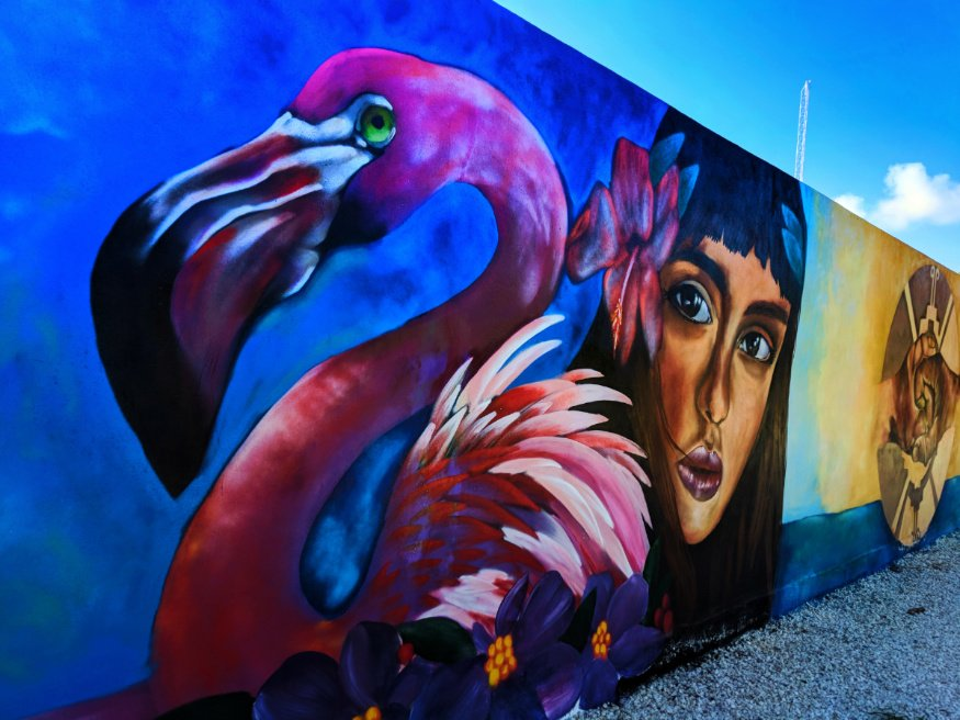 Flamingo Street Art Yucatan Road Trip 3