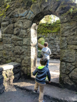 Taylor family at McLeahey Park Portland Oregon