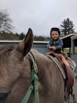 Taylor Family at C+M Stables Florence Oregon Coast