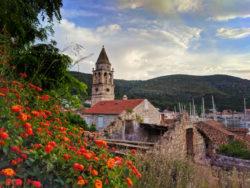 Butterfly bush with Belltower in Vis Croatia 1