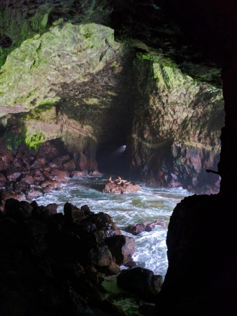Cavern at Sea Lion Caves Florence Oregon Coast 2