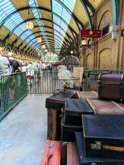 Platform 9 3 Quarters Kings Cross Universal Studios Florida Orlando 1