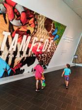 Taylor Family at Denver Art Museum 3