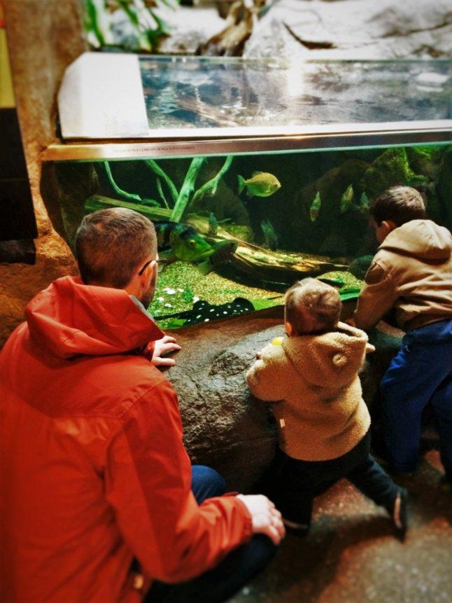 Chris Taylor and Dudes at Aquarium at Denver Zoo 1