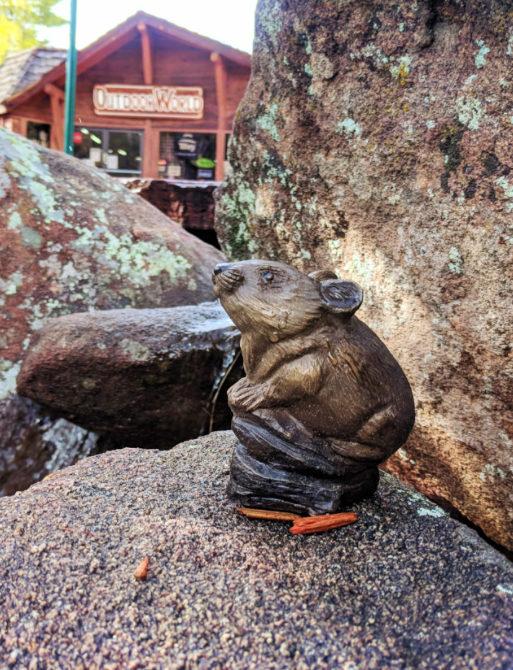 Pikas in the Park scavenger hunt Downtown Estes Park Colorado 3