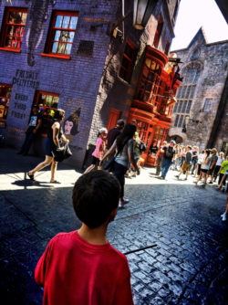 Taylor Family Casting Spells in Diagon Alley Wizarding World of Harry Potter Universal Studios Florida 3