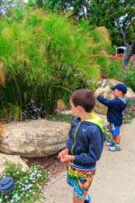 Taylor Family in Secret Garden Madonna Inn San Luis Obispo 2
