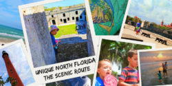 Unique Florida is so each to discover and experience along the Scenic Route. Top tips for having an epic Florida adventure through history, nature and culture. 2traveldads.com