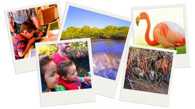 There are all kinds of easy day trips from Miami. Top ideas for creating an unforgettable South Florida vacation and visiting some awesome National Parks! 2traveldads.com