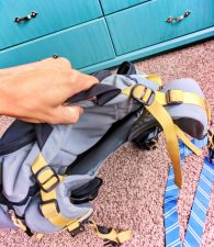Travel Safety backpack harness area 1
