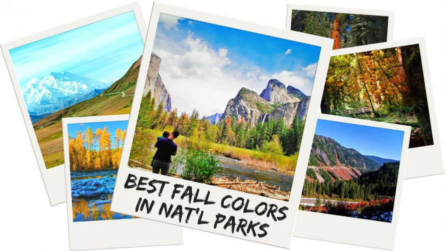best national parks in fall 8 must see parks for fall colors and a