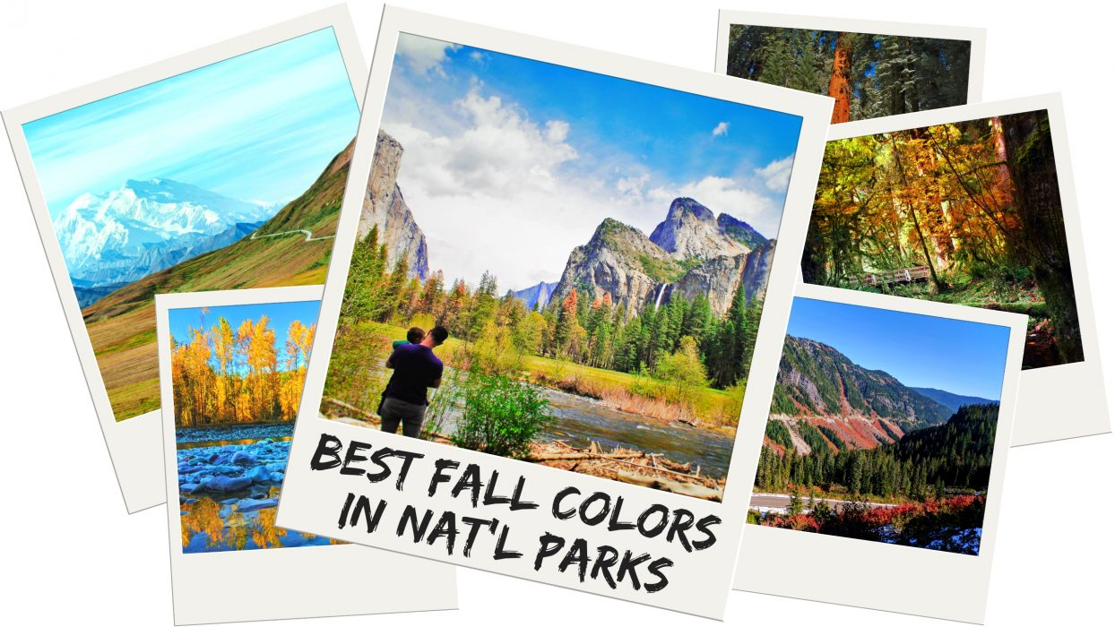 Fall foliage is awesome to take in and you'll find the best fall colors in National Parks. 7 Best picks for fall leaves and enjoying autumn in America's National Parks (and a bonus plan). 2traveldads.com