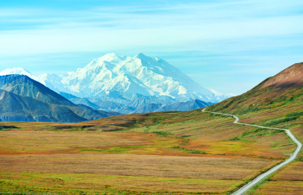 Fall Color on road to Wonder Lake in tundra Denali National Park 1