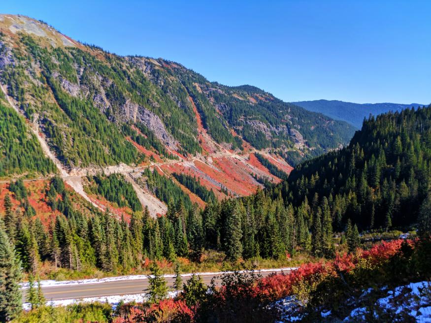 Fall Colors Stevens Canyon Mount Rainier National Park 4