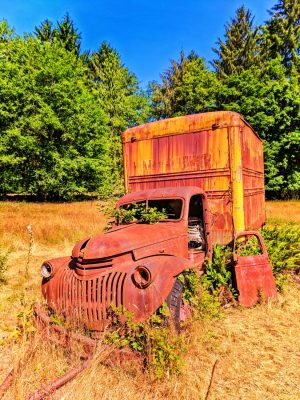 Rusted old truck on Homestead in Quinault Rainforest Olympic National Park 4