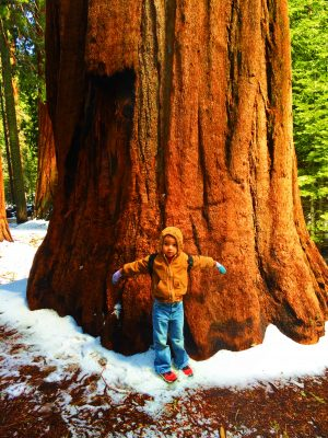 Taylor Family with Giant Sequoia Sequoia National Park 2