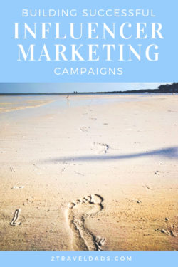 Building-Successful-Influencer-Marketing-Campaigns-pin-1-250x375.jpg