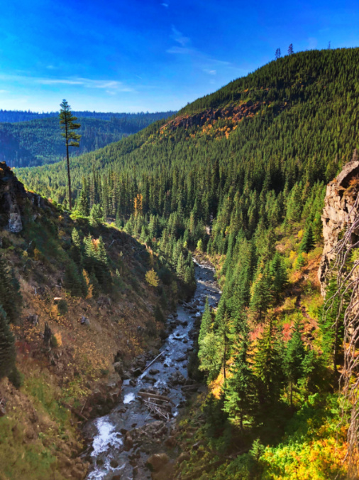 Fall Colors at Tumalo Creek Deschutes National Forest Bend Oregon 2