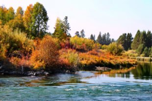 Fall Colors on Deschutes River at Dillon Falls Deschutes National Forest Bend Oregon 8