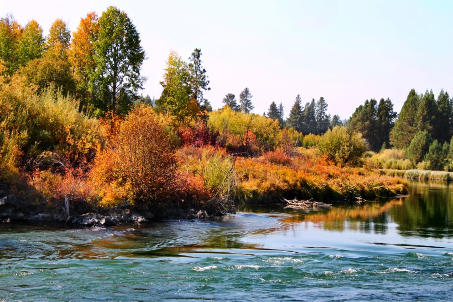 Fall Colors on Deschutes River at Dillon Falls Deschutes National Forest Bend Oregon 8