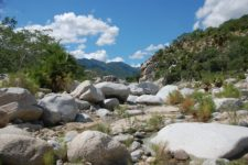 Hiking Sierra de la Laguna Adventures in Baja 3