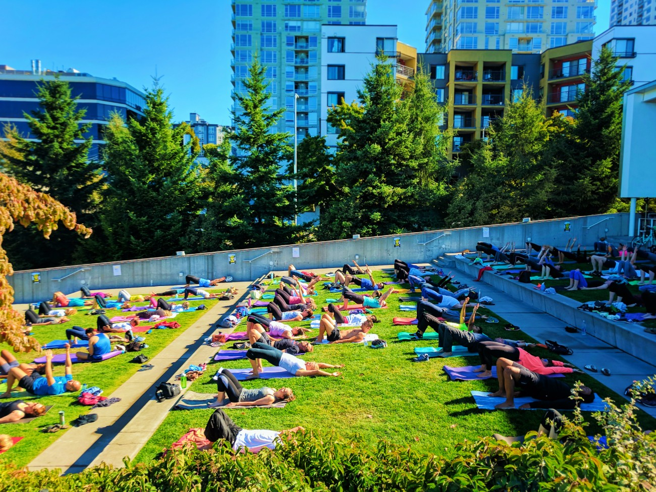 Public outdoor yoga at Olympic Sculpture Park Seattle 1
