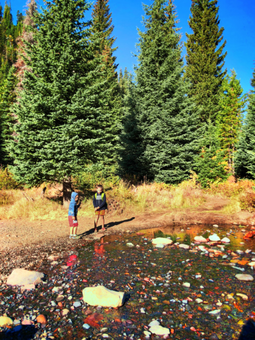 Taylor Family Fall Colors at Tumalo Creek Deschutes National Forest Bend Oregon 2