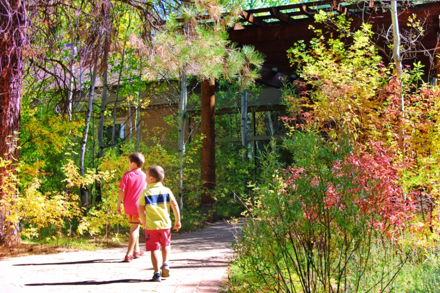 Taylor Family at High Desert Museum Bend Oregon 4