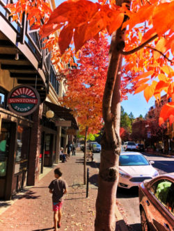 Taylor Family in downtown Bend Oregon 4