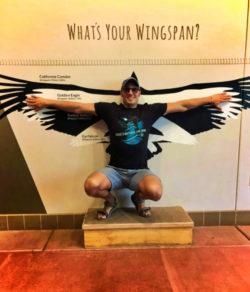 Taylor Family wingspan exhibit at High Desert Museum Bend Oregon 2