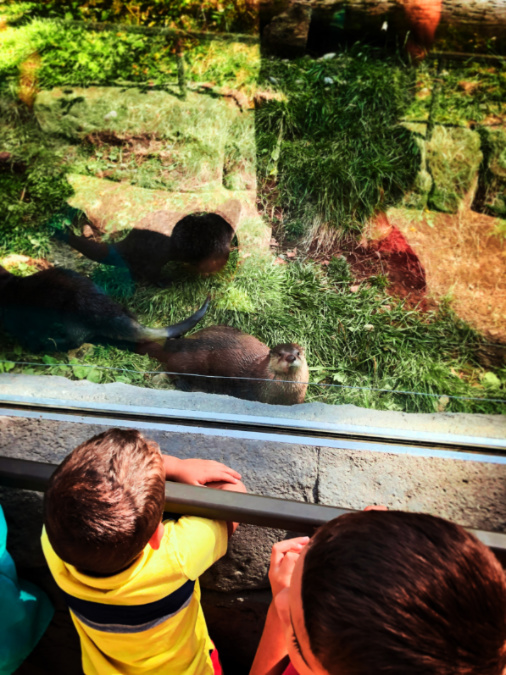 Taylor Family with River Otters at High Desert Museum Bend Oregon 1