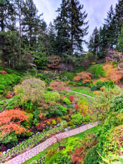 Fall Colors in Sunken Garden at Butchart Gardens Victoria BC 1