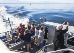 Prince of Whales tour photo credit: Tourism Victoria