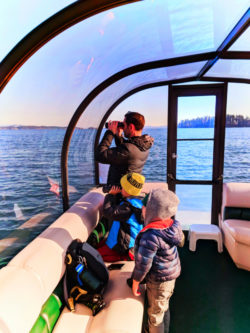 Taylor Family Ecocruising with Sidney Harbor Tours Sidney BC 2
