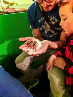 Taylor Family at Victoria Bug Zoo Victoria Canada 2