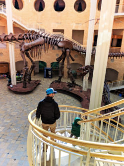 Taylor Family with Dinosaur skeleton at Fernbank Museum of Natural History Atlanta 1