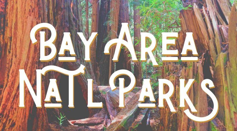 Bay Area NPS Landing