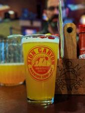 Beer Pint at Zion Brewing Co Springdale Utah 1