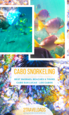 Cabo San Lucas is perfect for snorkeling. These are the best spots for snorkeling in Cabo, snorkel tour recommendations and maps to get you around Los Cabos, Mexico. #mexico #wildlife #snorkeling