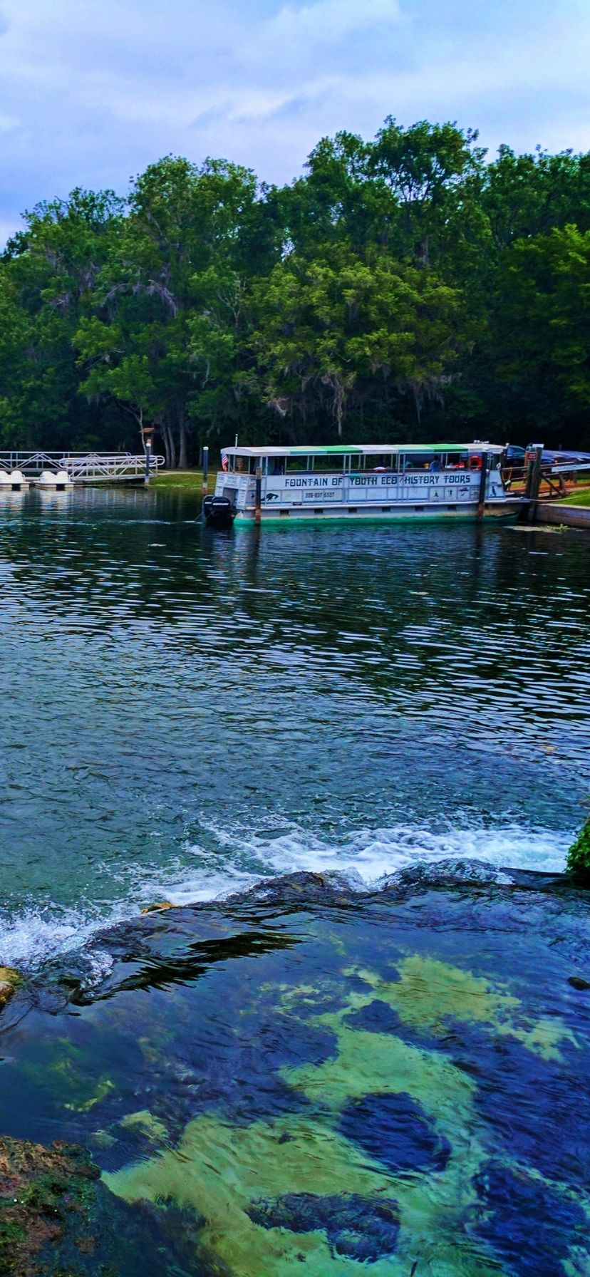 Best Florida Springs for Manatees Ecotour at De Leon Springs State Park