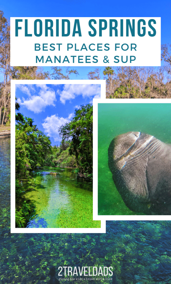 The many Florida springs are amazing. These are the best places for manatees, alligators and paddleboarding through Florida's jungles. #paddleboarding #SUP #Florida