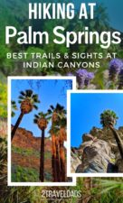 The best hiking in Palm Springs includes palm forests, waterfalls, oasis and desert. Hiking trails and tips for exploring beyond the city of Palm Springs, California. #hiking #California #PalmSprings
