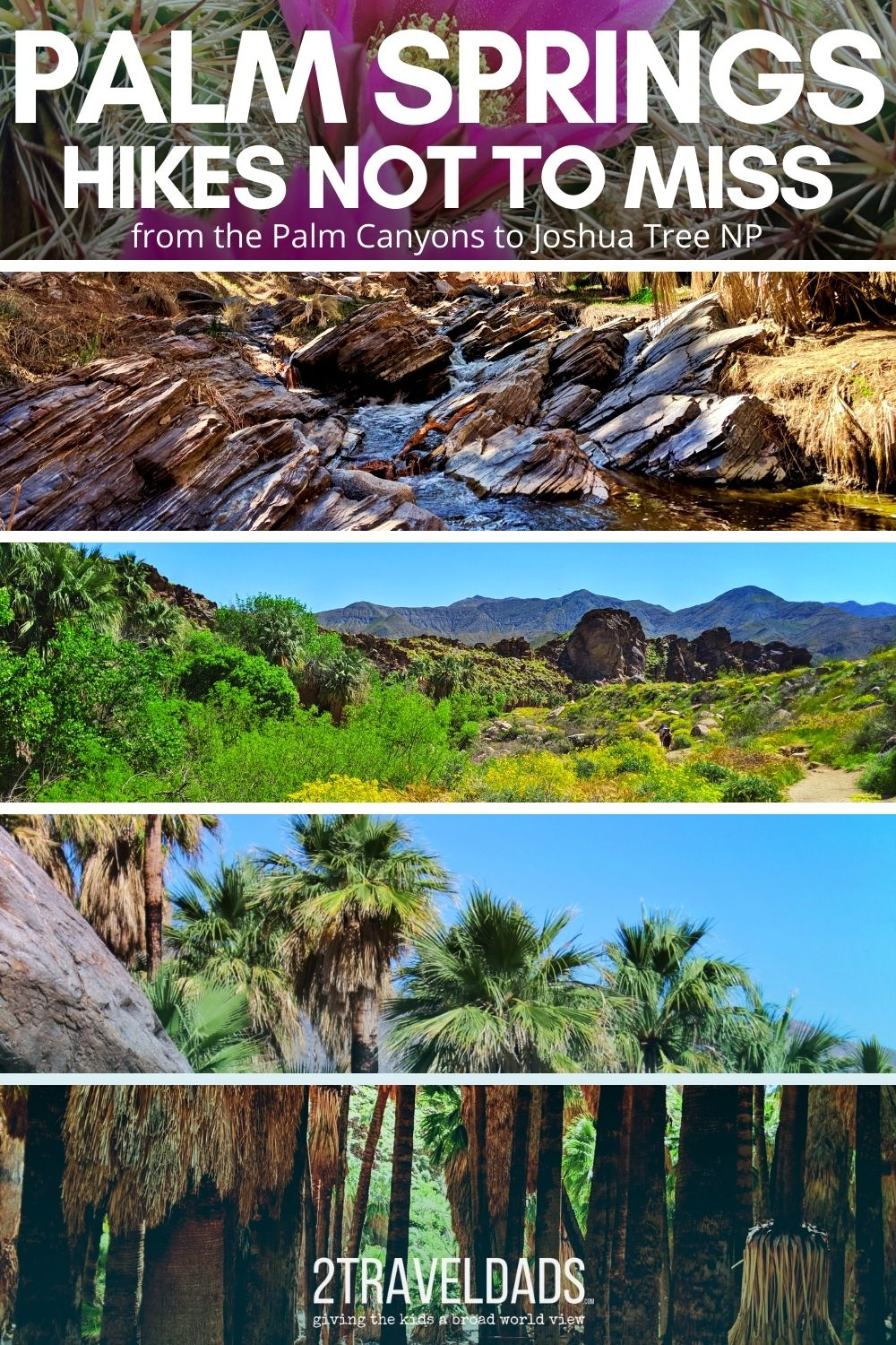 The best hiking in Palm Springs includes palm forests, waterfalls, oasis and desert. Hiking trails and tips for exploring the canyons, Coachella Valley and Joshua Tree National Park.