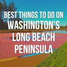 The best things to do on Washington's Long Beach Peninsula including beach fires, hiking, birdwatching, lighthouses and clam digging! Visiting cranberry farms and wildlife refuges year round for unique PNW experiences.