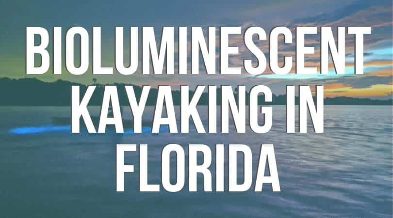 Bioluminescent Kayaking: Florida's Best Kept (odd) Thrilling Magical Secret. Where to go and everything you need to know to experience the wonder of glow in the dark night kayaking.